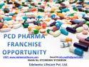 Allopathic PCD Pharma Franchise In Chhatrapur