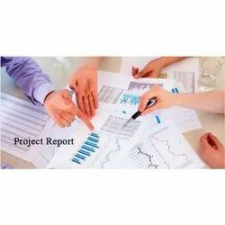 Industrial Project Reports Services