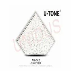 Pinhole 12mm Teg Acoustic False Ceiling