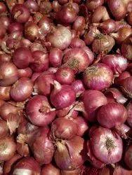 Ratlam,Madhya Pardesh Dry A Grade Onion, Jute Bag, Packaging Size: 50 Kg