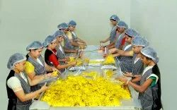 Industrial Snacks Packaging Services