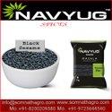 Navyug Diamond Black Sesame Seeds, Packaging: Packet, Packaging Size: 1 Kg
