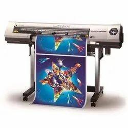 Eco Solvent Vinyl Printing Service, in Delhi NCR