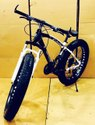 BMW Sleek Design Black Fat Tyre Cycle