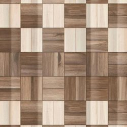 Asian Granito Simpolo Nomad Sisam Hl Wall Tile, Size: 450x300 mm