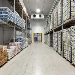 Goldfishh WAAZO Warehouse Service