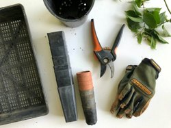 Outdoor Gardening Services