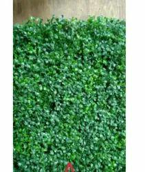Vertical Garden /artificial Green Leaves