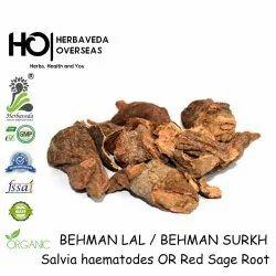 Herbvaeda Behman Surkh Behman Lal, Grade Standard: Food Grade, Packaging: Plastic Bottled