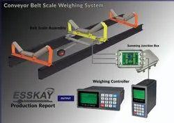 Digital 50 To 60 Hz Dynamic Belt Weigher, 230 V