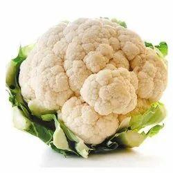 Hybrid White Fresh Cauliflower, 50 Kg, Packaging: Plastic Bag or Polythene Bag