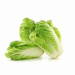 A Grade Green Fresh Chinese Cabbage