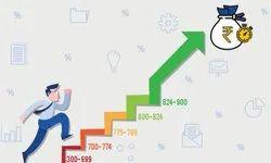 depend CIBIL Improvement Advice, Financial Reporting