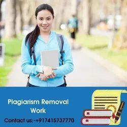 plagiarism Removal Work