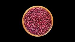 Red Kidney Beans Rajma High In Protein Rs 87 Kg Shree Siddhivinayak Exports Id 22534340948