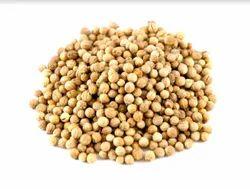 Coriander Seed, Packaging Type: PP Bag, Packaging Size: 25, 50 Kg