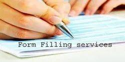 数据输入表单填充服务,公司人力:20-50,在线