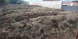 50 Kg Bag Powder Vermiculture Organic Fertilizer, Bio-Tech Grade