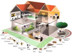 Home Chemical Treatment Household Pest Control in Ahmadabad