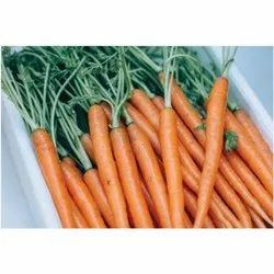 A Grade Fresh Red Carrot, Packaging Type: Gunny Bag, Packaging Size: 40 Kg