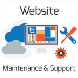 Online Website Maintenance Service, in Pan India