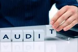 5-7 Working Days. Company Internal Auditing Services, Pan India