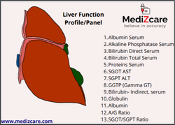 Ml Unisex Liver Function Test at home, For Blood