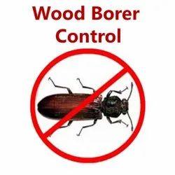 Wood Borer Control Services in Ahmadabad