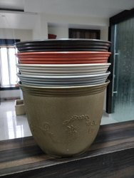 Leafy Pot Semi -12