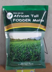African Tall Maize / Fodder Maize / Makka (Zea Mays) Fodder Seeds