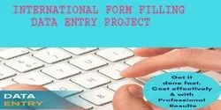 ISO9001 International Form Filling Data Entry Project, Company Manpower: 20-50, Online
