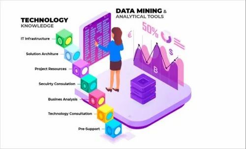 Software Consulting service