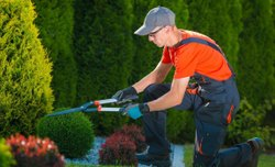 Artificial and Natural Gardening Service, Pune