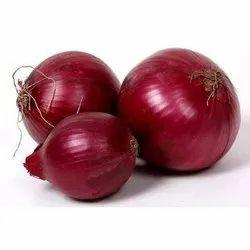 50 kg B Grade Red Onion, Gunny Bag, Onion Size Available: Medium