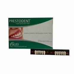 Prestodent S/6 Single Layered Artificial Acrylic Teeth