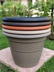 Lavish Pot 10 Fresh