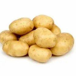 Cold Storage A Grade Fresh Potato, Gunny Bag, 50 Kg