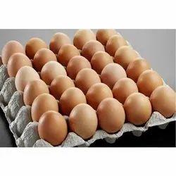 餐厅用有机棕色鸡蛋