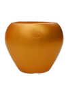 Apple Blow Pot-14 Fresh