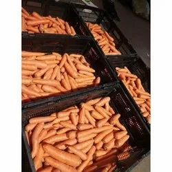 A Grade Fresh Red Carrot, Crate