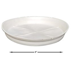 5 Inch Bottom Plate, For Gardening
