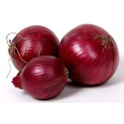 A Grade Karnataka Onion, Packaging Size: 50 Kg, Onion Size Available: Large
