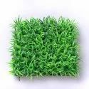 Stadium Grass/Foot Ball Ground Grass