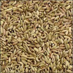 Fennel Seed, Packaging Type: PP Bag, Jute Bag, Packaging Size: 25, 50 Kg