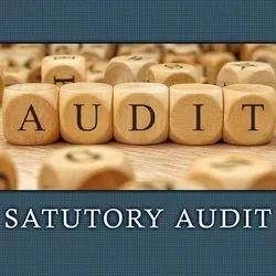 Statutory Audit Service, Pan India