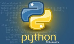 Python Online Training Service