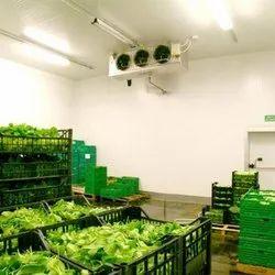 Vegetable Cold Storage System