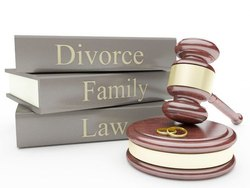 《法律离婚》,新德里