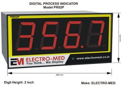 2 Inch Process Indicator