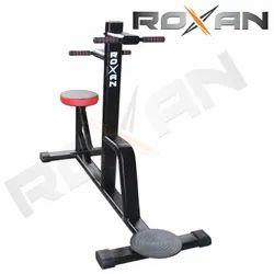 Roxan Double Twister For Home/Gym Use
